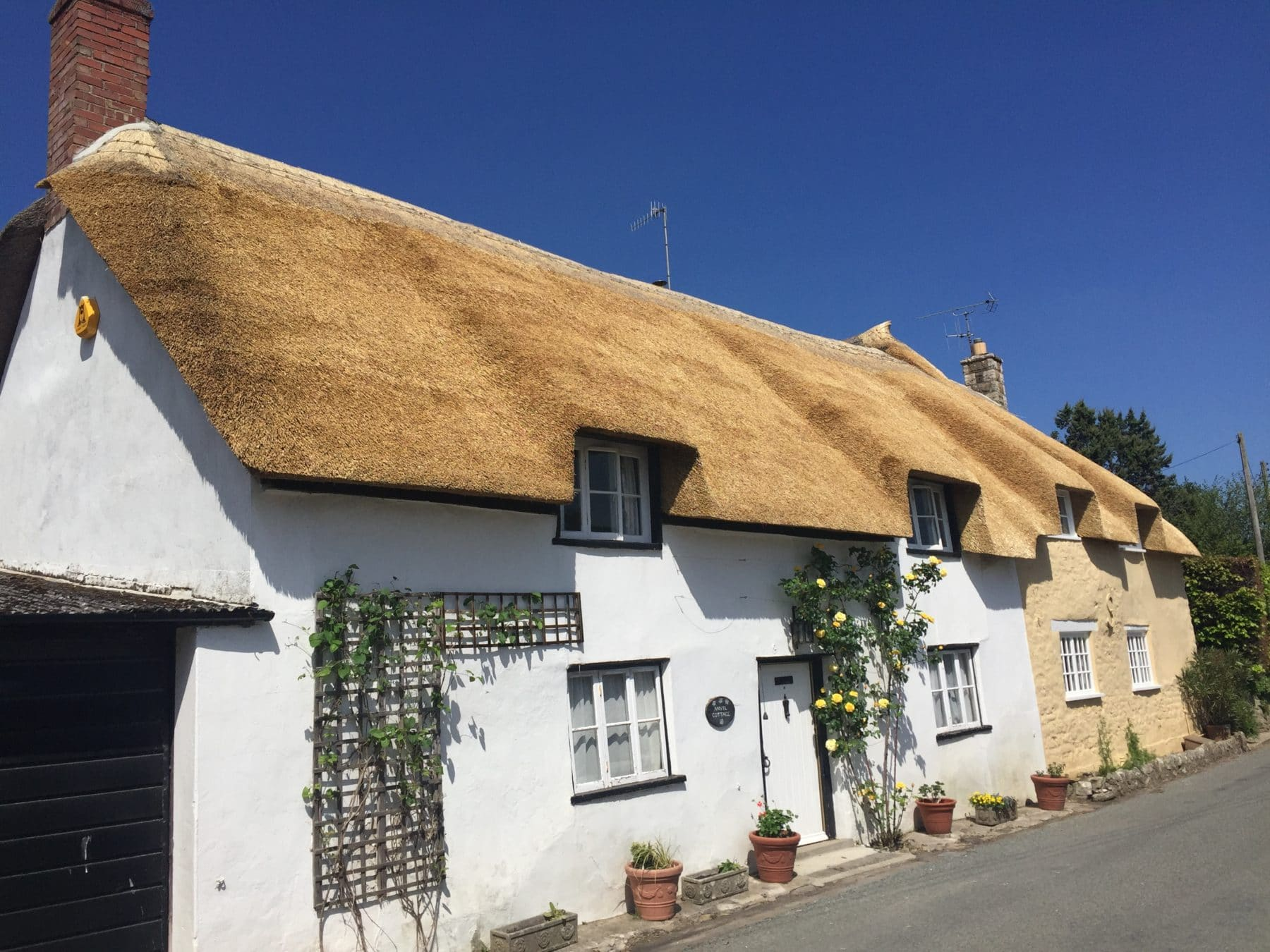 Lovely Front Side View of a Thatched Roof